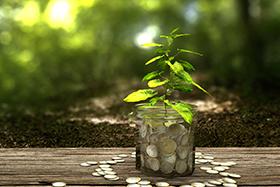Przydomowa oczyszczalnia sciekow - zieloneoczyszczalnie
